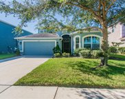 11592 Weston Course Loop, Riverview image