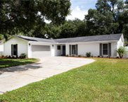 11305 Carrollwood Estates Drive, Tampa image