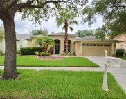 10218 Timberland Point Drive, Tampa image
