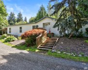 16916 212th Ave NE, Woodinville image