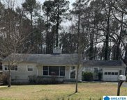 1405 Monticello Rd, Irondale image