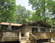 102 Roosevelt Dr, Lords Valley image