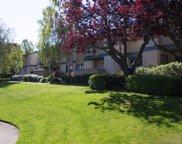 853 Woodside Way 134, San Mateo image