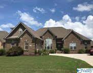 17478 Windermere Drive, Athens image