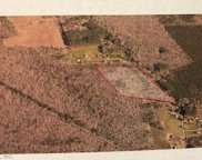 20acre Shillelagh Road, South Chesapeake image