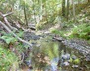 Vine Hill, Santa Cruz image