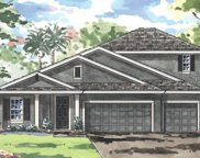 8740 Blue Myrtle Way, Land O' Lakes image