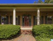3611 Spring Avenue Sw, Decatur image