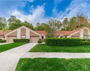 4031 Mermoor Court, Palm Harbor image