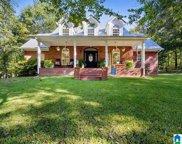 5371 Pine Mountain Road, Remlap image