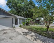 3611 Glenmac Ct, Palm Harbor image