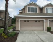10332 Willow Leaf Trail, Tampa image