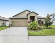 12220 Ballentrae Forest Drive, Riverview image