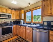 28725 To-O-Witz Trail, Steamboat Springs image
