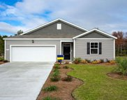 TBD Black Pearl Court, Pawleys Island image
