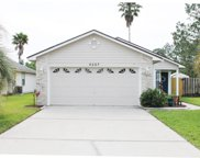 4227 HANGING MOSS DR, Orange Park image