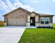 13720 Henry A. Wallace Ln, Manor image