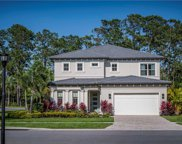 10141 Royal Island Court, Orlando image