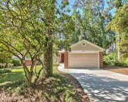 3621 Molly Pitcher, Tallahassee image