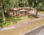 11515 River Country Drive, Riverview image