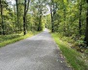 Shepard Road, Blandford image