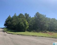Valley View Ln Unit lot 4, Oneonta image