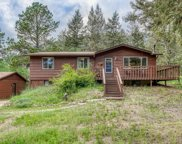 31168 Witteman Road, Conifer image