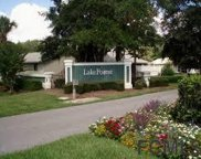 52 Lake Forest Pl Unit N/A, Palm Coast image