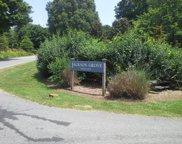 20 Jackson Grove South, Landrum image