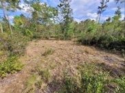 Ninemile Point Road, Pierson image