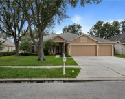 10233 Shadow Branch Drive, Tampa image