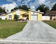 11 Chip Court, Kissimmee image