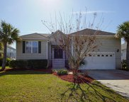 1560 Carolina Jasmine Road, Mount Pleasant image