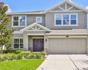 10702 Pictorial Park Drive, Tampa image