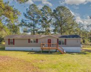 1649 BOYD RD, Bryceville image