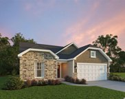 107 Costa Ct., Pawleys Island image