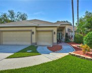 18611 Chemille Drive, Lutz image