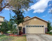 3518 Tarbolton Way, Land O' Lakes image