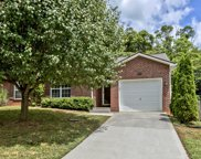 5267 Blue Star Drive, Knoxville image