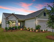 805  Birdsong Way, Fort Mill image
