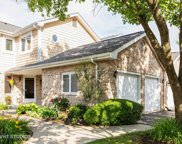 11356 Lakebrook Court, Orland Park image