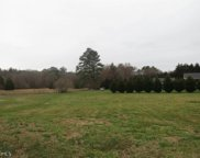 Doe Ln, Cedartown image