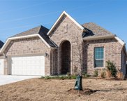 14309 Home Trail, Fort Worth image