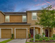 6748 Holly Heath Drive, Riverview image