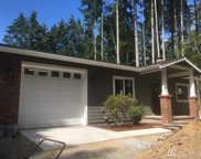 11415 Country Club Dr, Anderson Island image