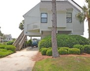 51 Blue Crab Way, Pawleys Island image