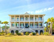 2824 River Vista Way, Mount Pleasant image
