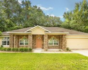 389 SW MULBERRY DRIVE, Lake City image