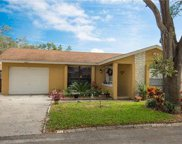 8003 Hearthstone Court, Tampa image