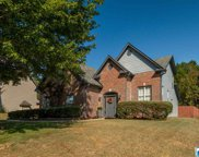 250 Dawns Way, Trussville image